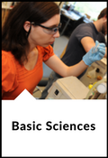 Basic Sciences